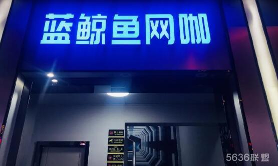 蓝鲸鱼网咖盛大开业,电脑配置大曝光